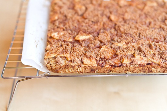 20101026IMG 8884 thumb   Buttery Apple Streusel Oat Squares