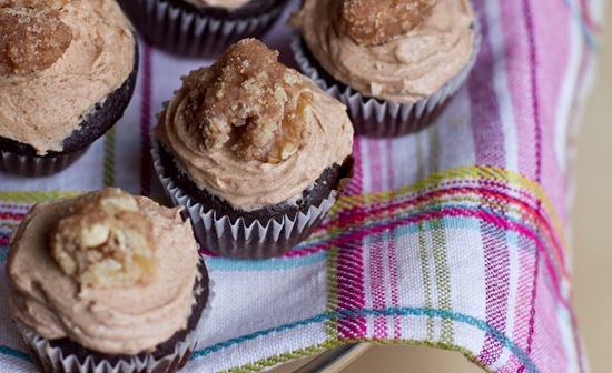 20101105IMG 9606 thumb   Mini Cinnamon Chocolate Cupcakes w/ Spiced Buttercream and Candied Maple Walnuts